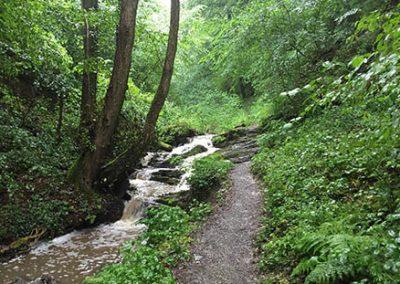 Pulsbach Gorge