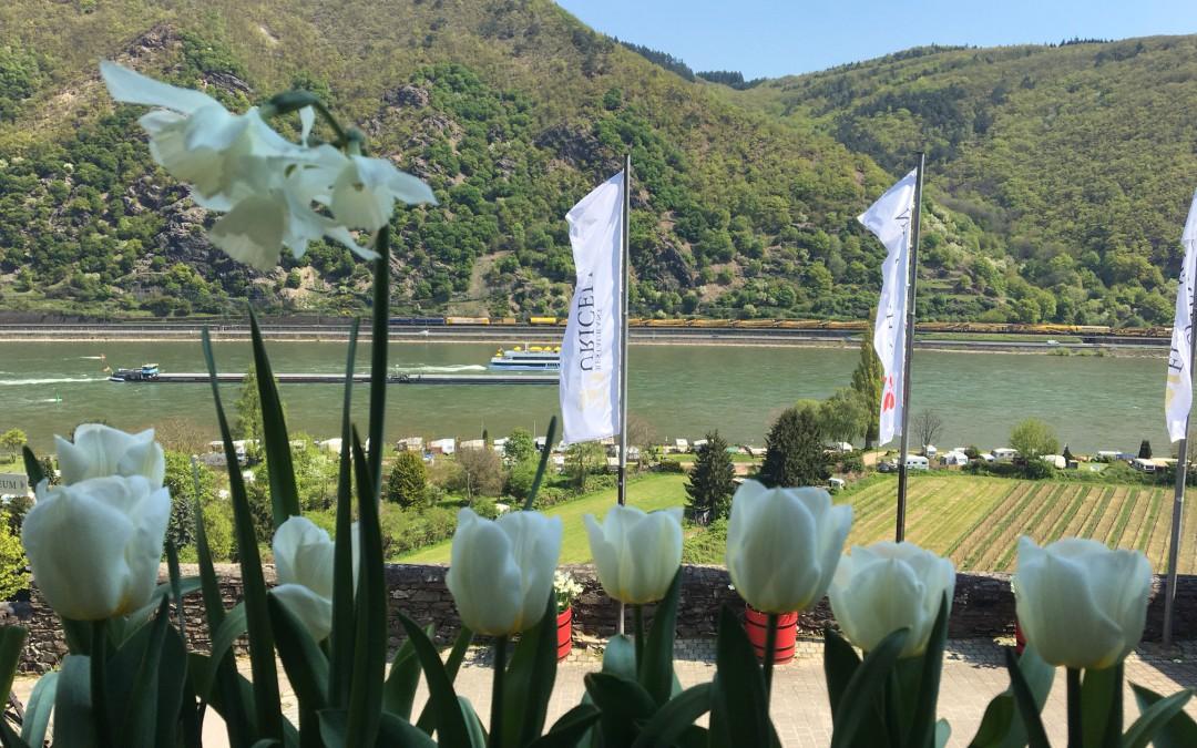 Sonnige Tage am Mittelrhein