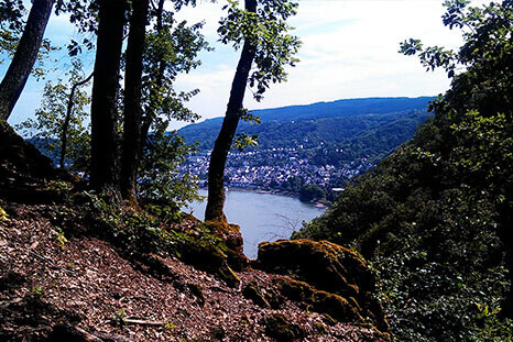 Fixed-rope Routes in Boppard, Oberwesel, Morgenbachtal