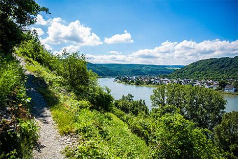 Rhine footpath: Kestert – Osterspai