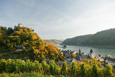 Rhine footpath: Lorch – Kaub